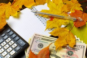 calculator, cash, notepad, and pen under leaves